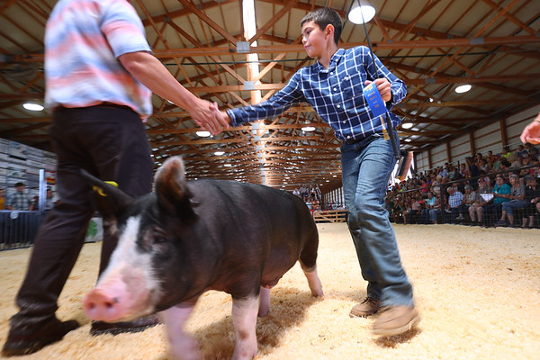 7-14-21<br /> Noah Zook shaking the judges hand while while showing at the Howard County Fair Wednesday.<br /> Tim Bath   Kokomo Tribune