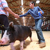 7-14-21<br /> Noah Zook shaking the judges hand while while showing at the Howard County Fair Wednesday.<br /> Tim Bath | Kokomo Tribune