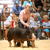 7-14-21<br /> Addyson Eads moving her animal around the arena at the Howard County Fair Wednesday.<br /> Tim Bath | Kokomo Tribune