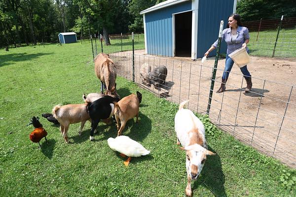 7-14-21<br /> Stephanie Schwartz feeding some of the animals at Blue Barn Farm.<br /> Tim Bath   Kokomo Tribune