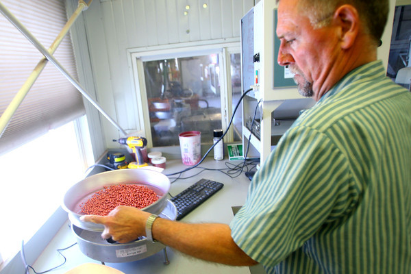 4-28-14   --- Beck's Hybrids located in Hamilton county will be expanding and creating more jobs. Dewey Harden weighs soy bean seeds and then pours them in a machine that counts them through a photo process. -- <br />   Tim Bath | Kokomo Tribune