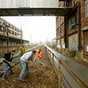 4-25-14   --- Seasonal City of Kokomo employees rake mulch along the Industrial Heritage Trail between the old Haynes plants between Union and Home Ave. -- <br />   Tim Bath | Kokomo Tribune