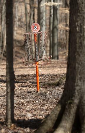 Honey Bear Hollow disc golf