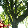 8-15-12<br /> Neighbors Tim Sheets and Rod Goode measure and talk about the oak tree, one of several that are slated for removal for a sewer project in Darrough Chapel. Also area for about 10 or 12 feet is wide open behind the row of trees that could be used for the drainage tile.<br /> KT photo | Tim Bath