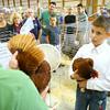 7-8-14 <br /> Howard County Fair. Cameron Wagler with his Road Island Read during judging.<br /> Tim Bath | Kokomo Tribune