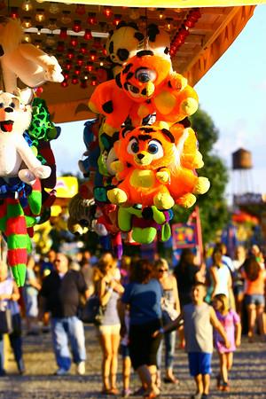 7-8-14<br /> Howard County Fair.<br /> Tim Bath | Kokomo Tribune