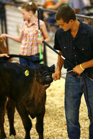 7-8-14 <br /> Howard County Fair.<br /> Tim Bath   Kokomo Tribune
