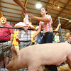 7-11-12<br /> Howard County 4h Fair - Swine or hog judging<br /> Peyton Hite receiving a ribbon as she exits the arena.<br /> KT photo | Tim Bath