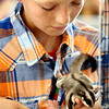 7-12-12<br /> Jared Pyle with one of his Sugar Gliders that he submitted for pocket pets.<br /> KT photo | Tim Bath