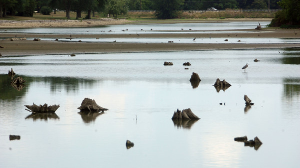 7-17-12<br /> Water very low at the Kokomo Reservoir.<br /> Looking at the reservoir near 50 North.<br /> KT photo | Tim Bath
