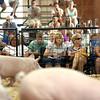 7-11-12<br /> Howard County 4h Fair - Swine or hog judging<br /> <br /> KT photo | Tim Bath