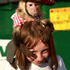 7-12-12<br /> JoJo the Monkey at Howard County Fair<br /> JoJo sits on the top of 7-year-old Katie Hogan's head on Thursday at the Howard County fair.<br /> KT photo | Kelly Lafferty