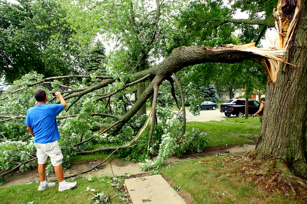 7-1-14   --- Rick Dillman takes a picture of a squirrel on the half a maple tree that came down in the high winds this morning. His childhood house owned by his mother, Colleen Dillman, is at 2305 N. Waugh Street.  --<br />   Tim Bath | Kokomo Tribune