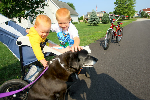 "7-31-14<br /> Prairie Acres neighborhood. Camden woods, 23 months, and Ian woods, 7, who were on a walk with grandma, pet neighborhood resident Beth Juliot's dog ""Pepper.""<br /> Tim Bath 