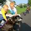 "7-31-14<br /> Prairie Acres neighborhood. Camden woods, 23 months, and Ian woods, 7, who were on a walk with grandma, pet neighborhood resident Beth Juliot's dog ""Pepper.""<br /> Tim Bath | Kokomo Tribune"