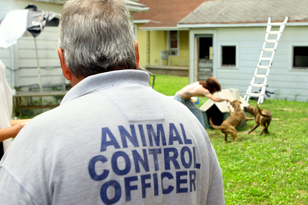 7-2-14   --- Animal Control Officer Billy Bryant working in Kokomo and Howard County.  --<br />   Tim Bath | Kokomo Tribune