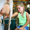 7-7-14 <br /> Howard County Fair.  Kailey Novinger, 6, milking a goat.<br /> Tim Bath | Kokomo Tribune