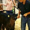 7-8-14 <br /> Howard County Fair.<br /> Tim Bath | Kokomo Tribune