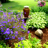 6-17-14   --- Sue Jones garden at 344 North 400 East. She will be one of the stops on the garden stroll complete with shadded places to stop and rest--<br />   Tim Bath | Kokomo Tribune