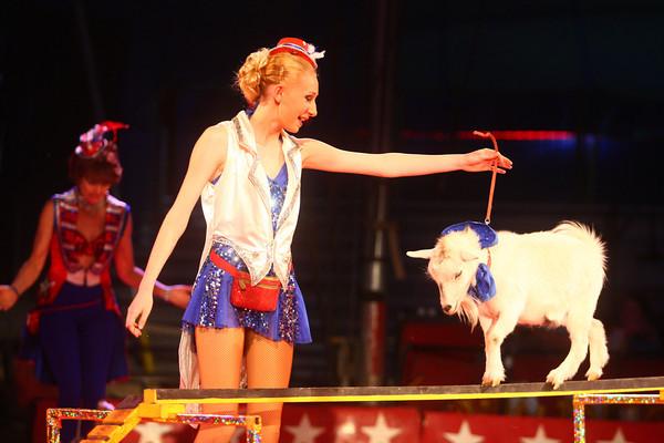 5-9-14<br /> Kelly Miller Circus<br /> <br /> Kelly Lafferty | Kokomo Tribune
