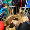 3-18-14   --- Ag Day at the Howard County Fair grounds. Jay McKinney and David Grimme talk about different swine with 5th graders from Eastern. -- <br />   KT photo | Tim Bath