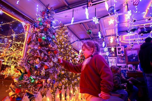 11-28-13  --  We Care Park Christmas lights opening night. Emily Sawyer, 5, checking out some of the lights.<br />   KT photo | Tim Bath