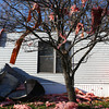 11-18-13<br /> Miami County storm damage<br /> Robert Bolen tries to clean up in front of his home at Maple Lawn Village in Miami County after severe storms hit on Sunday.<br /> KT photo | Kelly Lafferty