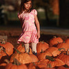 10-25-12<br /> Pumpkin patch<br /> 6-year-old Abrie Pentland takes a short break from searching for the perfect pumpkin at the pumpkin patch off of Jefferson.<br /> KT photo | Kelly Lafferty
