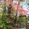 10-7-12<br /> Shades State Park<br /> KT photo   Ken de la Bastide