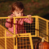 10-25-12<br /> Pumpkin patch<br /> 20-month-old Malia Bennett looks at a pumpkin in the wagon at the pumpkin patch off of Jefferson Street. Bennett was there with her sister, mom, and grandparents to take photos and look for pumpkins.<br /> KT photo | Kelly Lafferty