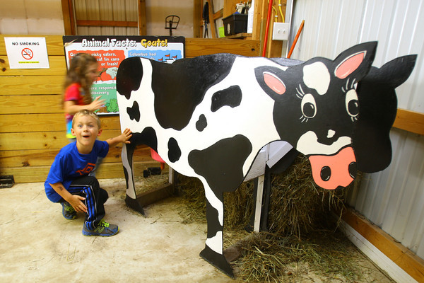 10-4-13  --  Miles Cunningham, 5, on a field trip with Childrens Christian Academy, checking out the utters on a fake cow at Guffey Acres.<br />   KT photo | Tim Bath