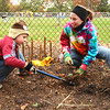 10-26-13<br /> Mohr Dog Park clean up<br /> Jared Fellow and Elise Glover work together to pull out a root as they help clean out the brush at Mohr Dog Park on Saturday morning.<br /> KT photo | Kelly Lafferty