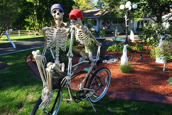 10-9-13  --  Kathy Rocchio has been setting a pair of skelletons up in different poses for the past few weeks in front of her house on West Jefferson Street.<br />   KT photo | Tim Bath