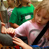 9-14-12<br /> Koh Koh Mah<br /> Howard Elementary student Sativa Carey, 9, pets an African Grey parrot during Koh Koh Mah on Friday.<br /> KT photo | Kelly Lafferty