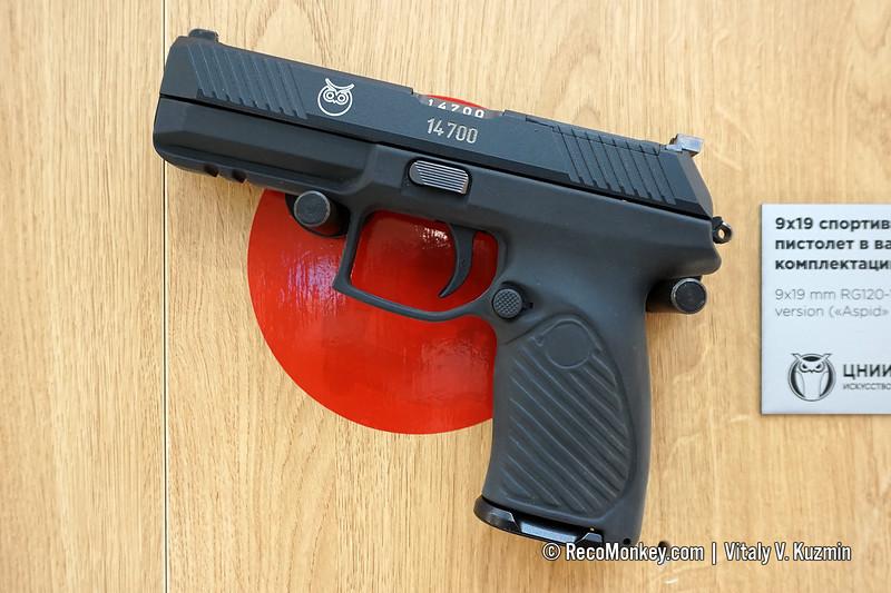 9x19mm RG120-1 Aspid pistol