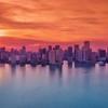 Miami Sorbet