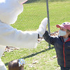 TIM JEAN/Staff photo<br /> <br /> Oliver Mancinelli, 4, of Andover, high fives the Easter Bunny during an egg hunt at Andover's Recreation Park. Participants were given a goody bag with special crafts to be completed at home and also photos taken with the Easter Bunny afterwards.  4/3/21