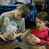 MIKE SPRINGER/Staff photo<br /> Cousins Nolan Mercier, 9, and Abigail Desmarais, 5, of Dracut examine a beaver skull and a piece of a log that was chewed by a beaver while learning about Mass Audubon's Wildwood Camp during a summer camp and kids activities fair on Sunday at the Holiday Inn Tewksbury-Andover.<br /> 3/1/2020