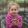AMANDA SABGA/Staff photo<br /> <br /> Nadia Baker, 4, of Raymond poses with her fifth catch of the morning at the Annual Fishing Derby at Hood Park during the Downtown Derby Day event in Derry, NH.<br /> <br /> 5/4/19