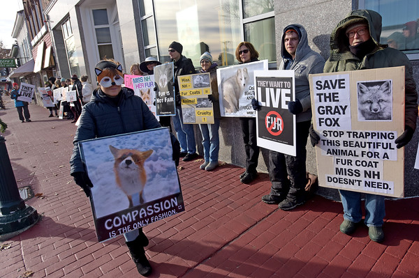 TIM JEAN/Staff photo <br /> <br /> Kristina Snyder, left, a spokesperson for N.H.C.A.R.T., New Hampshire Citizens Against Recreational Trapping and other animal rights groups held a fur protest outside the office of Miss New Hampshire Scholarship Program on East Broadway in Derry, NH.      11/29/19