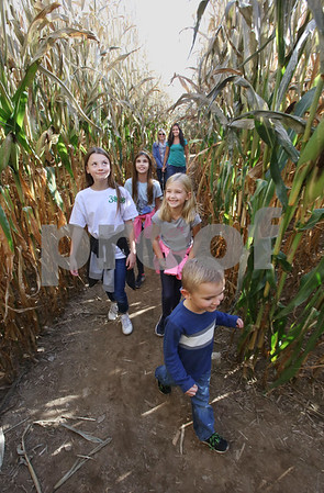MIKE SPRINGER/Staff photo<br /> Mothers heather Proulx, background left, and Krista Hook, both of Londonderry, watch as their children walk out ahead to find their way through the corn maze Sunday at Elwood Orchards in Londonderry. The children are, from left, Ashlyn Proulx, 10, Haley Hook, 10, Hannah Hook, 8, and leading the way: Bryce Proulx, 5.<br /> 10/13/2019