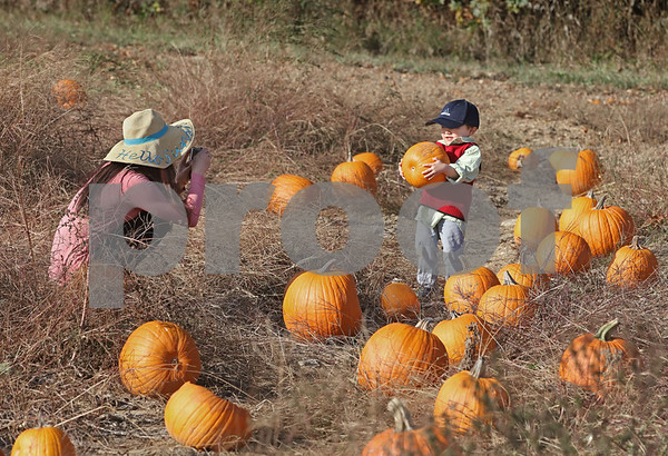 MIKE SPRINGER/Staff photo<br /> Youlan Rousseau of Bedford photographs her son Ruijun, 3, in the pick-your-own pumpkin patch Sunday at Elwood Orchards in Londonderry.<br /> 10/13/2019