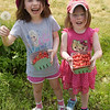 TIM JEAN/Staff photo<br /> <br /> Maria Ryzewski, 5, and her sister Diana, 3, of Bedford shows off the bounty of cherries they picked at Sunnycrest Farm in Londonderry.   6/26/20