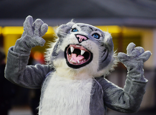 CARL RUSSO/Staff photo. Whittier Wildcat senior mascot, Catherine McNulty cheers for the team. Whittier Tech was defeated 36-22 by Ipswich in Friday, November 8 football action. 11/8/2019