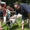 TIM JEAN/Staff photo<br /> <br /> Ralph Basiliere, Chairman of Vietnam Veterans Memorial Ad Hoc Commission pets a goat from Goats to Go in Georgetown before they are lead in to chow down on the tall grass at Mill Brook Park in Haverhill. The park is the new site of Haverhill's Vietnam Veterans Memorial.   7/28/20