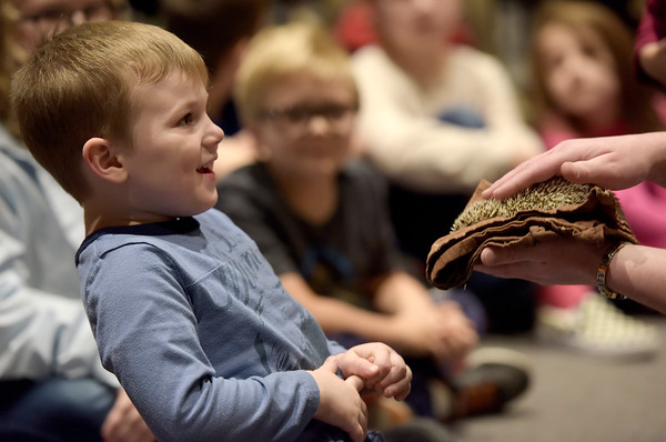 TIM JEAN/Staff photo <br /> <br /> Hudson Morin, 5, reacts after petting a hedgehog that flinched during Curious Creatures live animal program at the Haverhill Public Library.   1/3/20