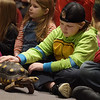TIM JEAN/Staff photo <br /> <br /> Liam McNulty, 8, pets a small tortoise as it walks around the room during Curious Creatures live animal program at the Haverhill Public Library.   1/3/20