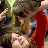 TIM JEAN/Staff photo <br /> <br /> Hannah Kempinski, 7, pets a chinchilla during Curious Creatures live animal program at the Haverhill Public Library.   1/3/20