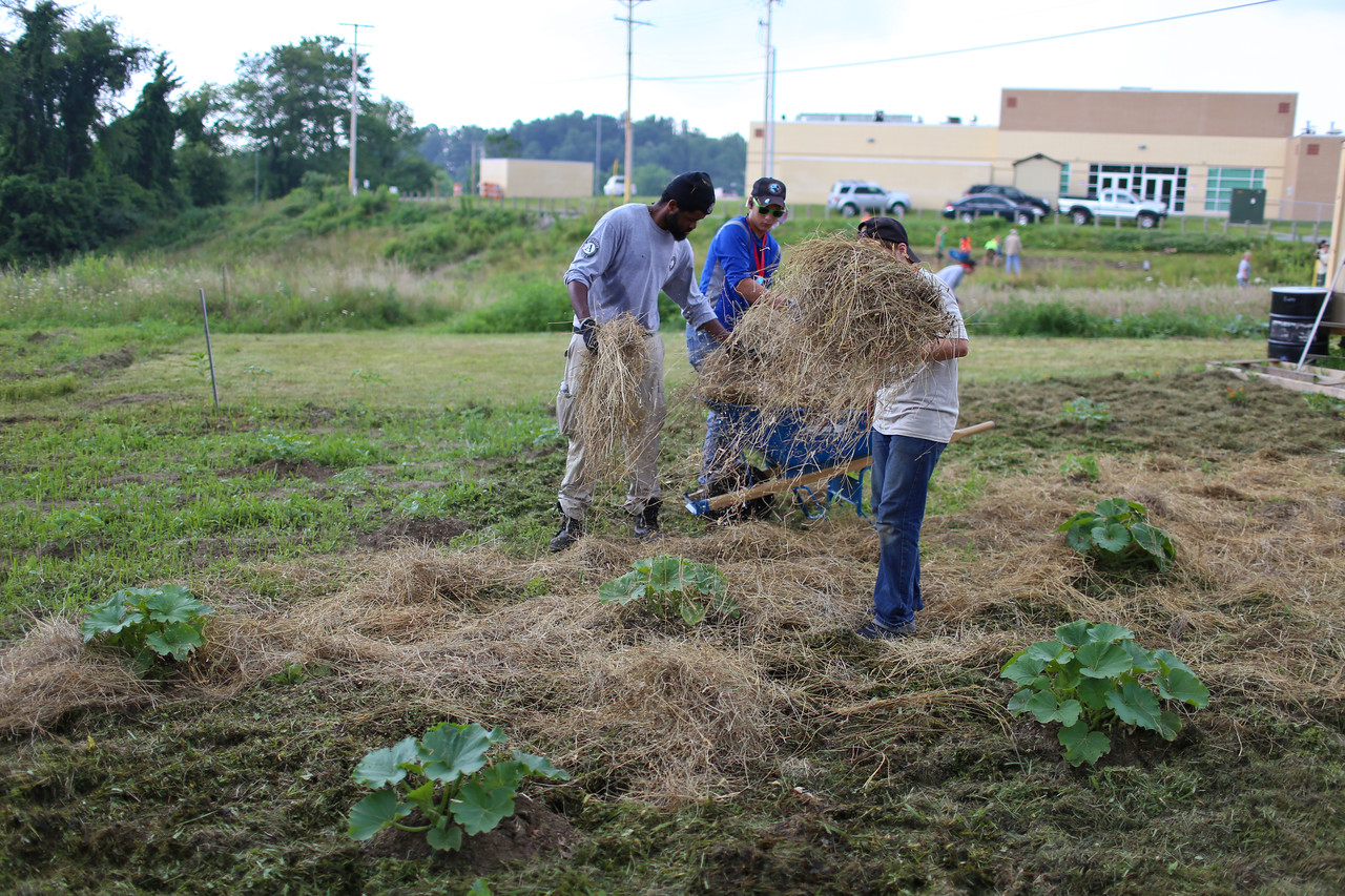 Boy Scouts and AmeriCorps NCCC member serving. Corporation for National and Community Service Photo.