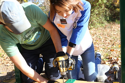 AmeriCorps member Amy Gale serving during Veterans Day in Washington, D.C. Corporation for National and Community Service Photo.